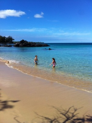 Post image for Fall 2013 Travel Highlights: Hawaii & Madison,WI
